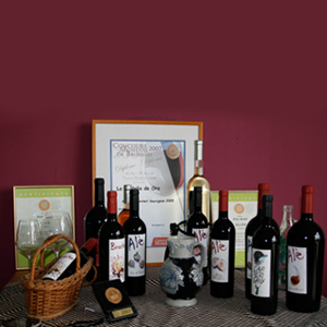 Organic wine from Mallorca Gourmet food from Spain Mariscal & Sarroca