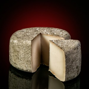 Goat´s Cheese from Albarracin Gourmet food from Spain Marisca & Sarroca