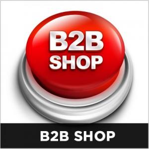 b2b-shop