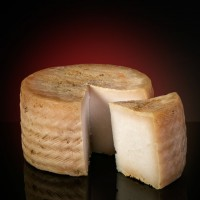 Sheep´s cheese from Moncayo