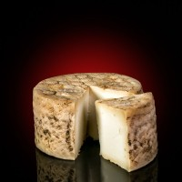 Goat´s cheese from Moncayo