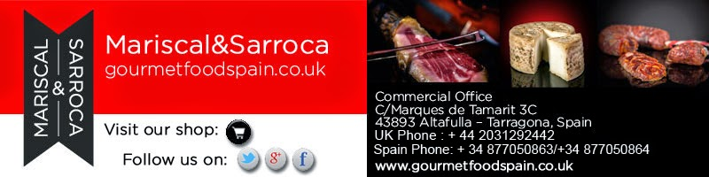 english-signature-mariscal&sarroca-gmail