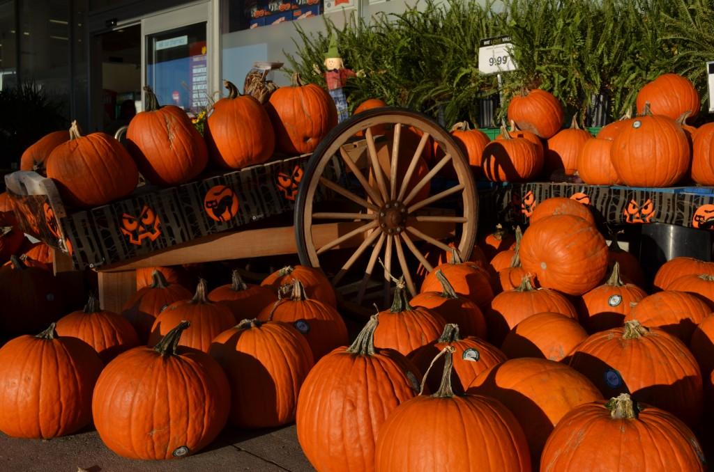 Halloween Pumpkin By Mariscal & Sarroca Halloween