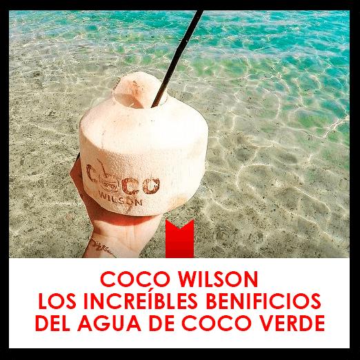 Coco Wilson y los increíbles beneficios del agua de coco verde