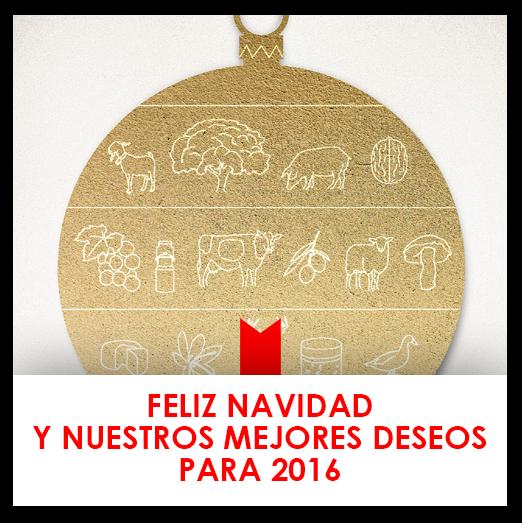 Feliz Navidad y nuestros mejores deseos para 2016
