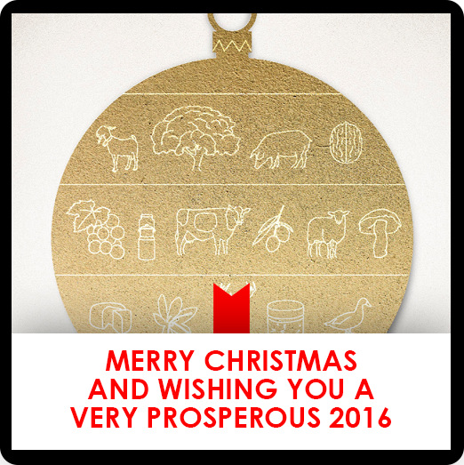 Merry Christmas and wishing you a very prosperous 2016
