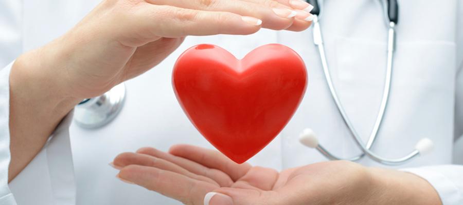 El azafrán combate las enfermedades cardiovasculares