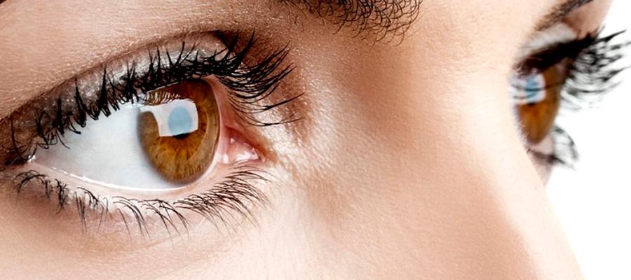 El azafrán mejora la vista